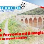 Ferrovie non dimenticate 2018- Sicilia-half